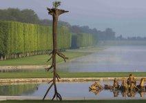 Деревянные скульптуры от Джузеппе Пеноне