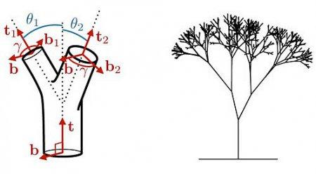 Лесная геометрия: код Да Винчи